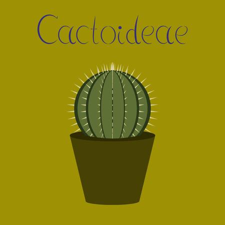 평면 그림 세련 된 배경 공장 Cactoideae
