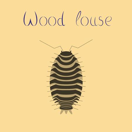 flat illustration on background wood louse Illustration