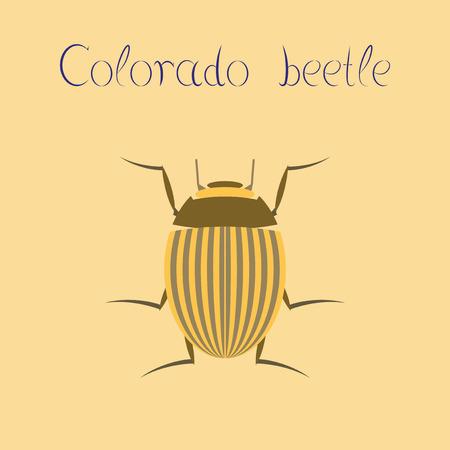 Illustration plate sur le fond de la coléoptère du Colorado Banque d'images - 83137739