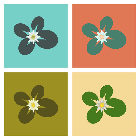assembly flat Illustrations water lily Illustration