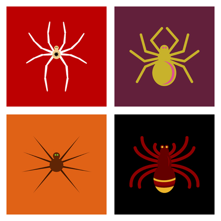assembly flat icons halloween spider