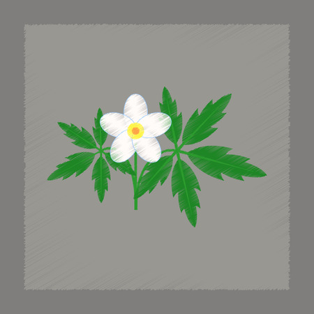 flat shading style icon flower Anemone