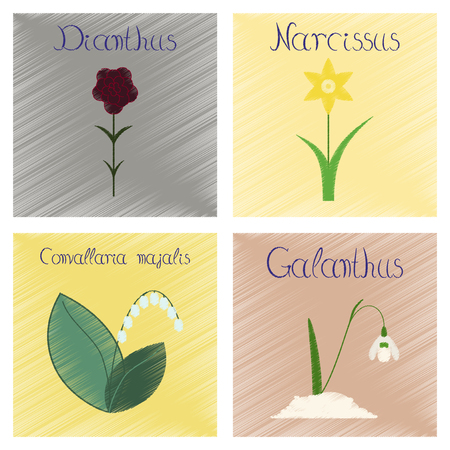 assembly flat shading style Illustrations Convallaria Narcissus Dianthus Galanthus