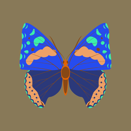 Colorful flat icon of butterfly isolated on brown Illustration