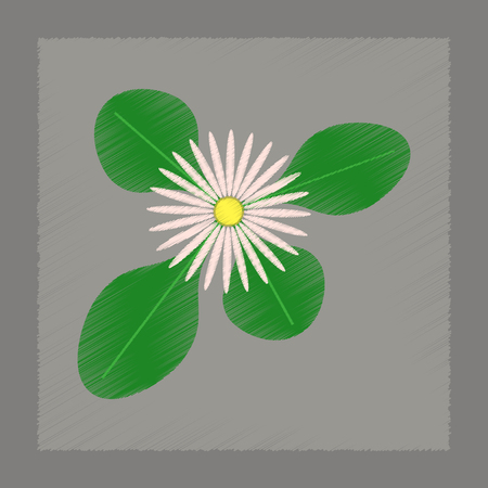 flat shading style Illustrations plant Bellis