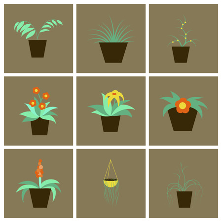 interior decoration: assembly flat icons houseplants Illustration