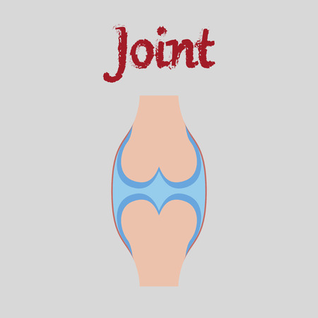 human organ icon in flat style joint