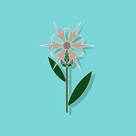 paper sticker on stylish background flower Centaurea Illustration