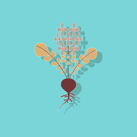 paper sticker on stylish background plant raphanus