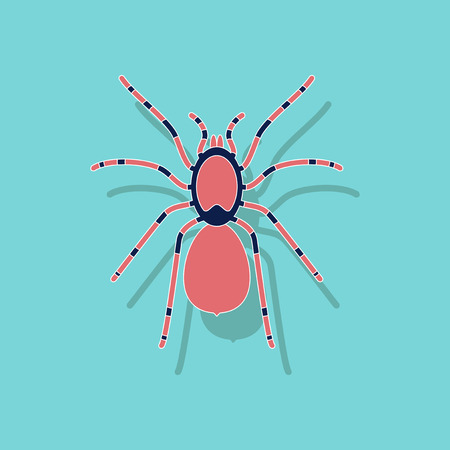 paper sticker on stylish background of tarantula