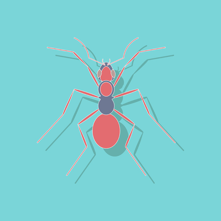 paper sticker on background of ant