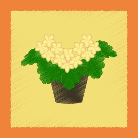 flat shading style Illustrations plant Pelargonium