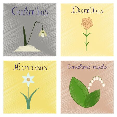 Assembly flat shading style illustrations Convallaria, Narcissus, Dianthus, Galanthus