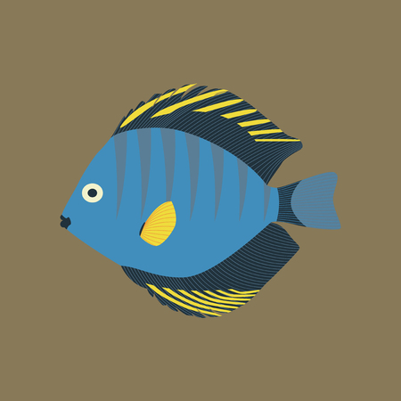 Vector illustration in flat style of a discus fish
