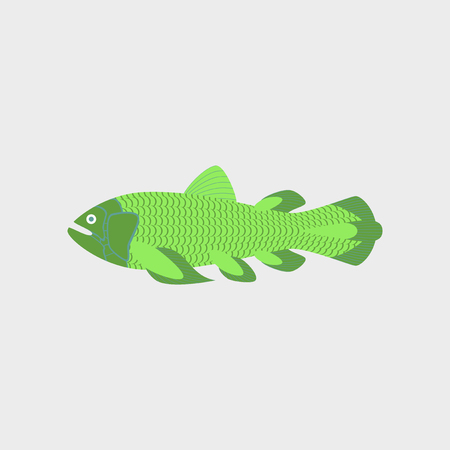 Vector illustration in flat style of a fish