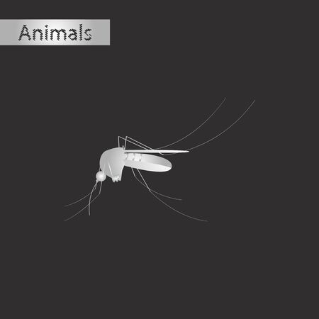 infected: Black and white style icon of a mosquito Illustration