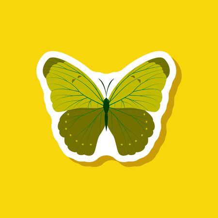 Butterfly paper sticker