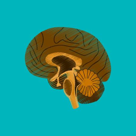 flat shading style icon brain