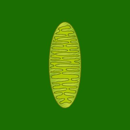 flat shading style icon mitochondrion Illustration