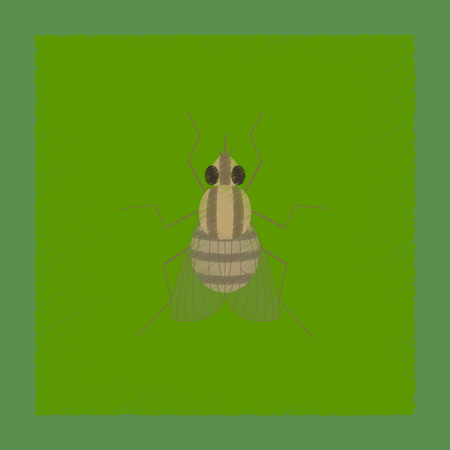 flat shading style illustration of insect fly Иллюстрация