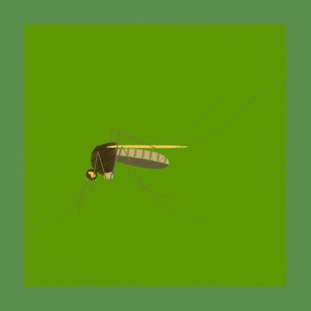 flat shading style illustration of insect mosquito Illustration