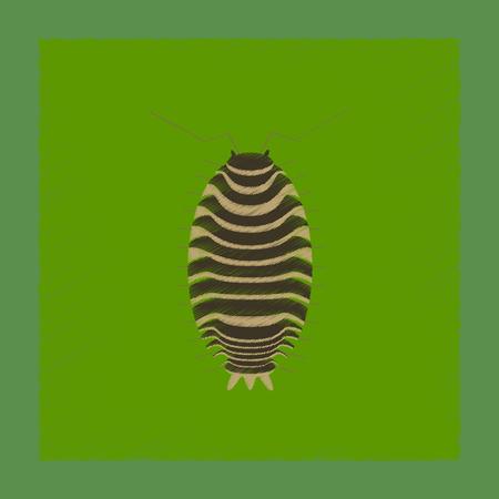 flat shading style illustration of wood louse Illustration