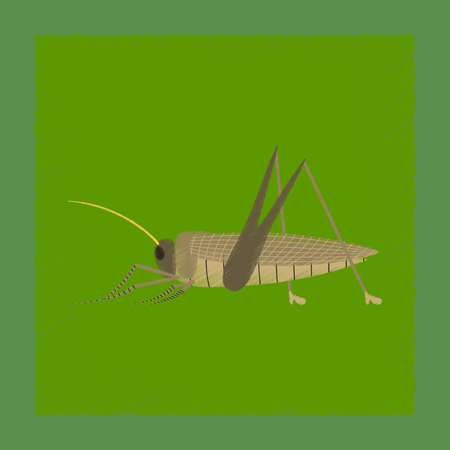 flat shading style illustration grasshopper