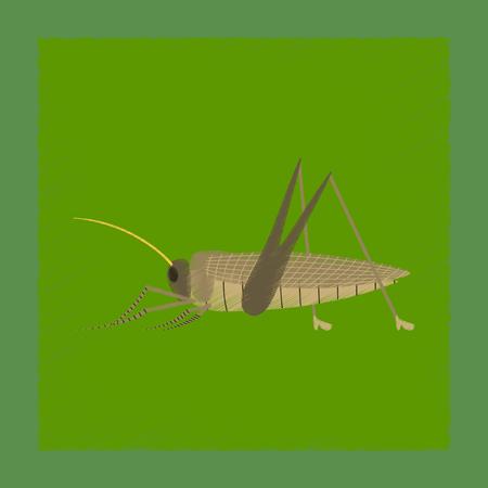 flat shading style illustration grasshopper