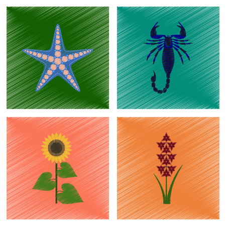 Montage flache Schattierung Stil Illustration Seestern Skorpion Sonnenblume Gladiolen Standard-Bild - 87862267