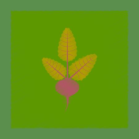 flat shading style illustration plant beta Illustration