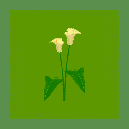flat shading style illustration flower calla