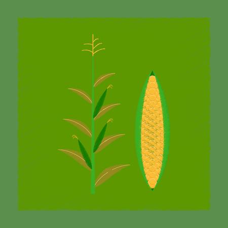 フラット シェーディング スタイル イラスト トウモロコシ 写真素材