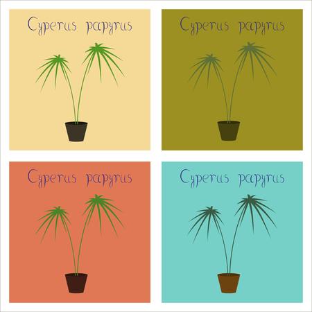 Assemblage de plat Illustrations plante Cyperus Banque d'images - 88963897
