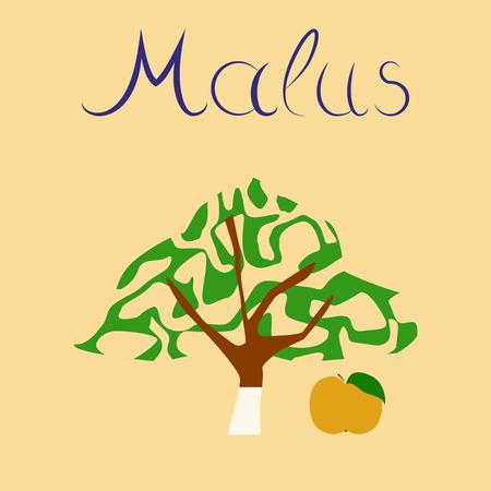 flat illustration stylish background plant Malus