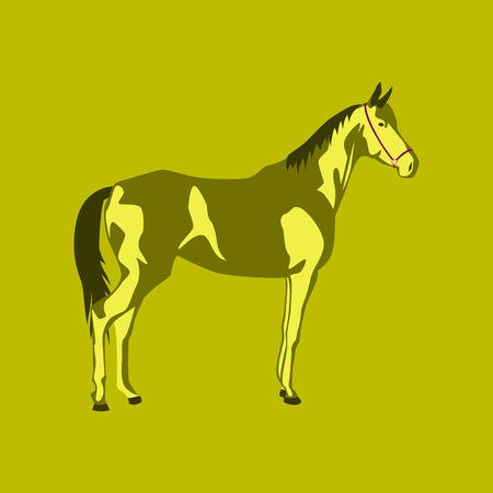 A Vector illustration in flat style horse