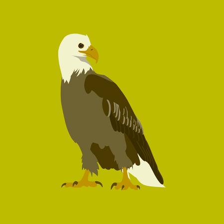 Vector illustration in flat style eagle Illustration