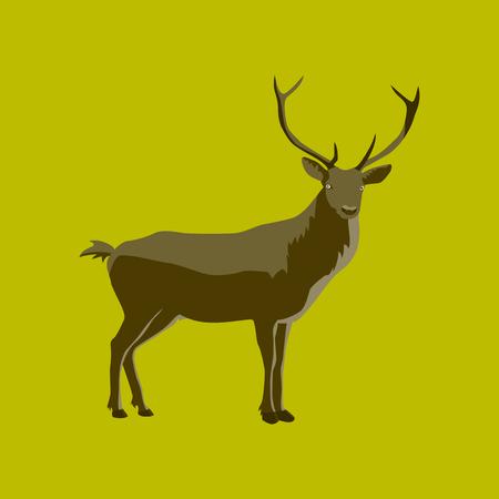 Vector illustration in flat style deer