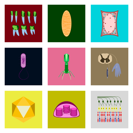 icons set in flat style cells viruses teeth