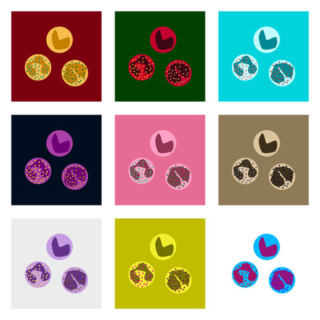 icons set in flat style leukocyte
