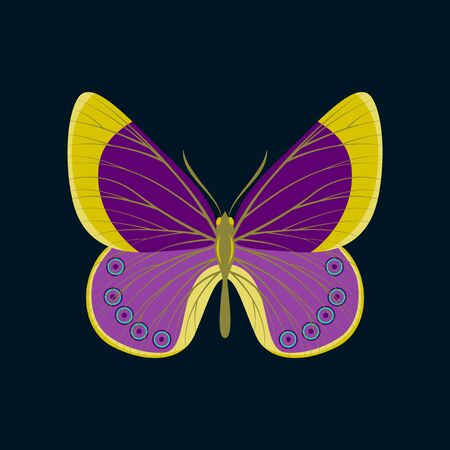 Colorful icon of butterfly isolated on dark blue Illustration