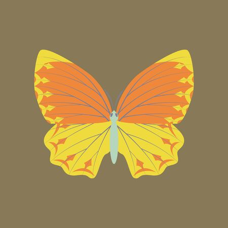 Colorful icon of butterfly isolated on brown Illustration
