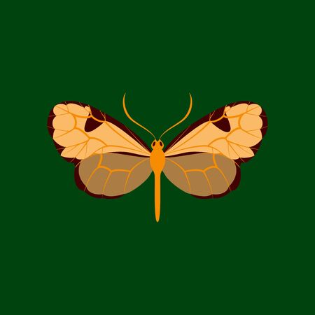 Colorful icon of butterfly isolated on green Stock Photo