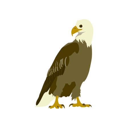 flat icons on theme of Andorra eagle