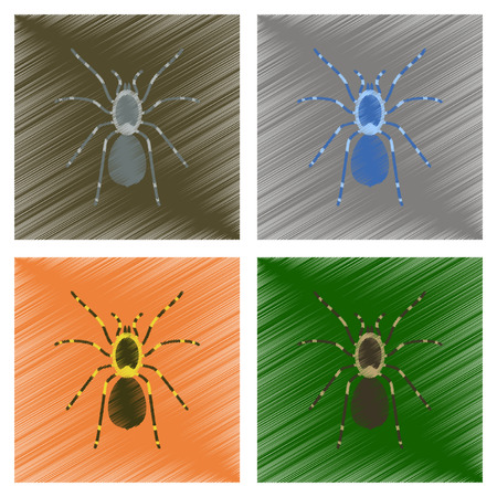 assembly flat shading style illustration spider tarantula