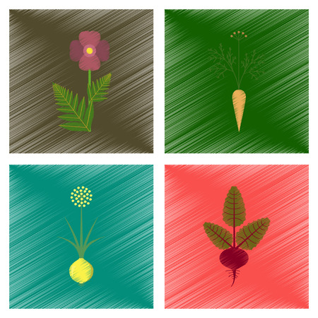 assembly flat shading style illustration papaver daucus carota allium beta