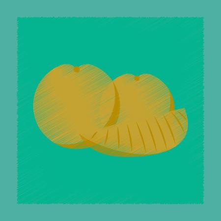 Flat shading style icon of orange slice 向量圖像