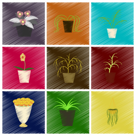 Assembly flat shading style icons houseplants. 向量圖像