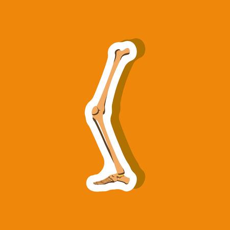 leg bone paper sticker on stylish background
