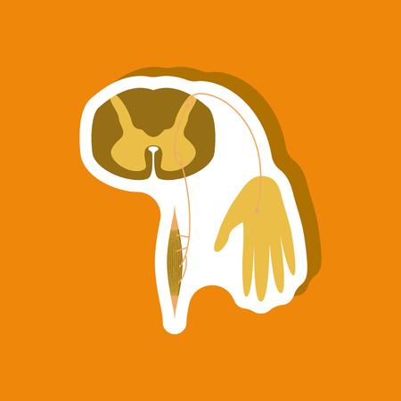 paper sticker on stylish background reflex arc Illustration