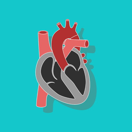Human heart paper sticker on stylish background.